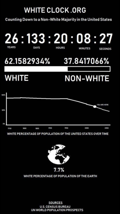 White Genocide Clock